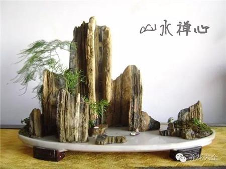 山石盆景欣赏美图