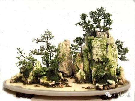 山石,盆景