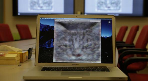 Google开发人脑模拟器:电脑自学成才